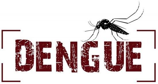 Dia Nacional de combate ao mosquito Aedes Aegypti: Os números ainda é preocupantes