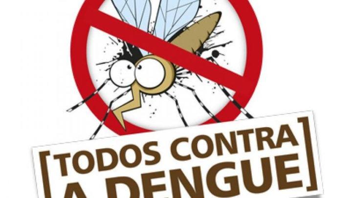 Ultimo levantamento aponta aumento em infestação do mosquito Aedes Aegypti