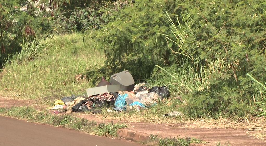 Moradora reclama de matagal em terreno próximo a rodoviária de Campo Mourão