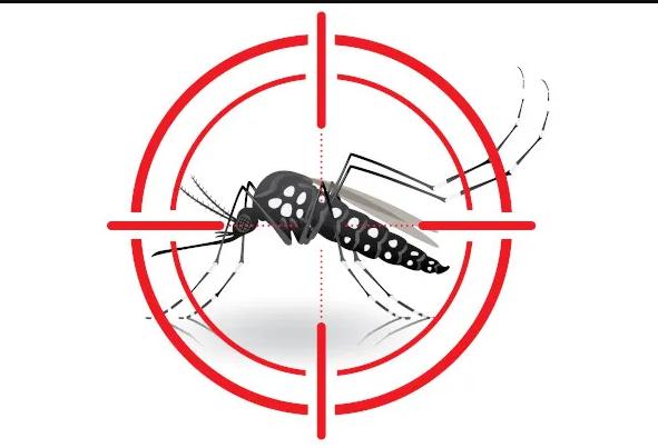 Levantamento aponta infestação do mosquito da dengue em Campo Mourão